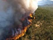 В Сибири бушуют пожары на территории 350 тысяч гектаров
