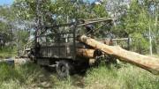 Экспорт камбоджийского леса во Вьетнам не прекратился