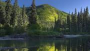 Канадские ученые доказали, что леса понижают загрязнение воздуха