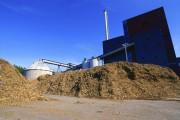 Компания Goldman Sachs построит электростанцию на биотопливе в Японии