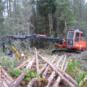 Новозеландских фермеров призывают профессионально отнестись к вырубке леса
