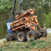 Лесопромышленная компания оштрафована из-за смерти рабочего