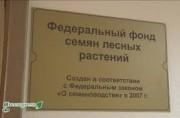 Основные запасы семян на протяжении последнего десятилетия хранятся в Пушкино