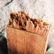 Стоимость древесного волокна для североамериканских целлюлозных заводов падает