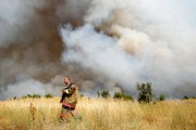 За сутки площадь пожаров в лесах России сократилась с 4,5 тыс. га до 747 га