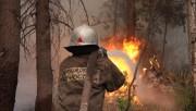 На Камчатке ликвидированы все лесные пожары