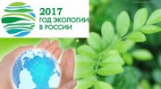 Модернизацию лесного законодательства обсудили в рамках экологического форума в Кемерово