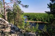 Карелия пересматривает нормативы и модель лесопользования
