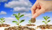 Экологический сбор в размере одного миллиард рублей в виде субсидий вернётся в регионы