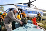 В Красноярском крае международные специалисты оценили роль пожаров в восстановлении лесной экосистемы