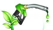 О конгрессе и выставке «Биомасса: топливо и энергия»