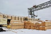Дополнения в закон Кировского региона о работе пунктов приёма и переработки древесины