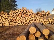 Из Сибири экспортировано лесоматериалов практически на 1,4 миллиарда долларов США