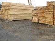 Информация по рынку древесины Австрии