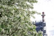 Улучшение экологической среды с помощью модернизации производственных процессов