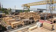 Деревообрабатывающая промышленность штата Мичиган принимает новые операционные стандарты