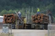 Британская Колумбия проведет обучение персонала лесохозяйственной промышленности