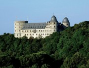 Представлена стратегия адаптации леса Северного Рейн-Вестфалия к климатическим условиям