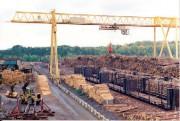 Норвегия утвердит регламент ЕС о поставках лесоматериалов