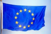 Европейский союз поддерживает развитие рынка тропической древесины