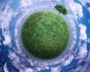 Приспособление лесов к изменяющимся условиям окружающей среды