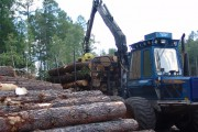 В лесопромышленном комплексе будут большие перемены