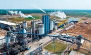 «Fibria» сообщила о реализации проекта по расширению производственной линии