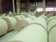 Целлюлозно-бумажная отрасль в РФ: состояние на сегодняшний день и перспективы ее развития