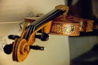 Из какого дерева делают скрипку
